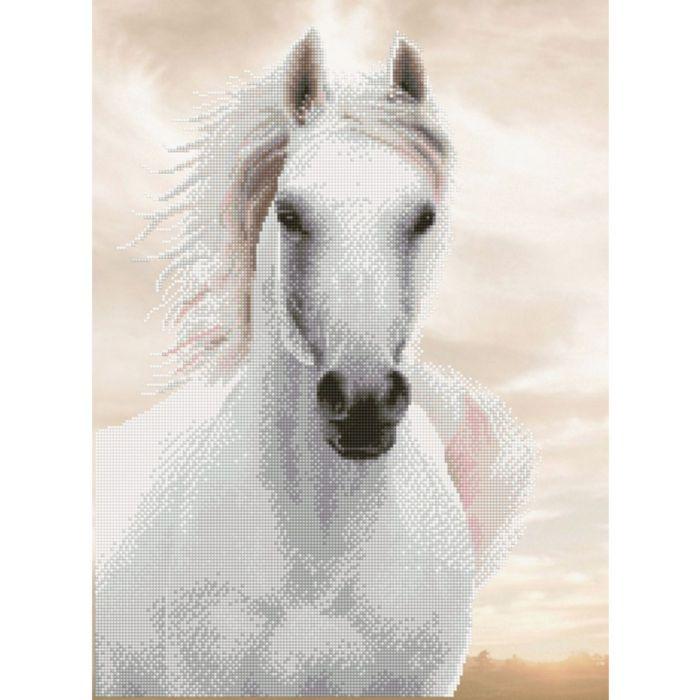 Diamond Dotz Paard Hengst 65×48 Cm